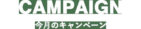 CAMPAIGN/今月のキャンペーン